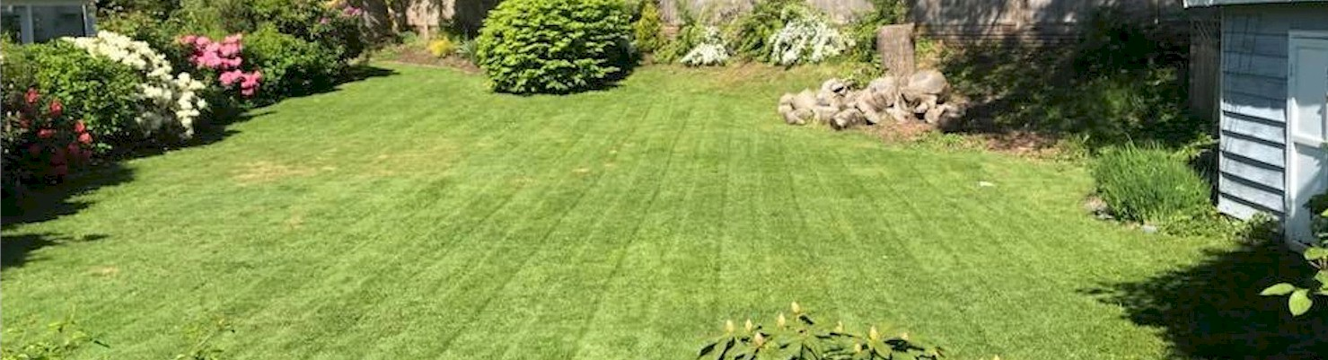 Lawn Care Services Chilliwack